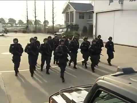 火凤凰:军队拦下特警部队,不料特警一下车,指着首长鼻子骂