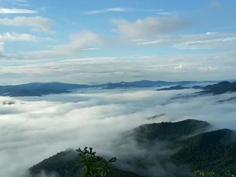早晨5点登金山小镇西山, 望云海, 脚踏祥云, 头顶蓝天, 变幻莫测