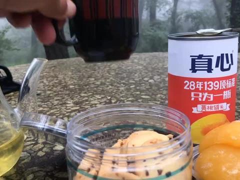 崂山瑶池侧,林下饮茶,真好地方