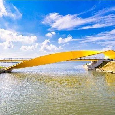 赤橙黄绿青蓝紫!滴水湖环湖景观带的七座桥有专属名字啦!