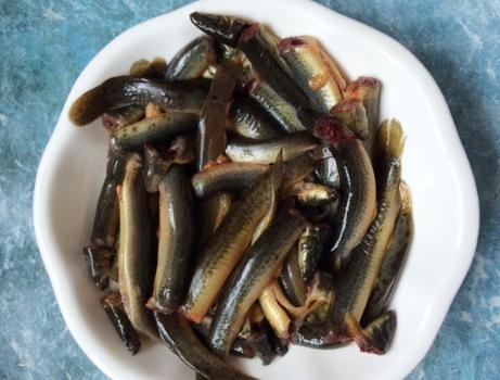 秋季进补,吃大鱼大肉不如泥鳅,好吃不贵,我家隔三差五吃