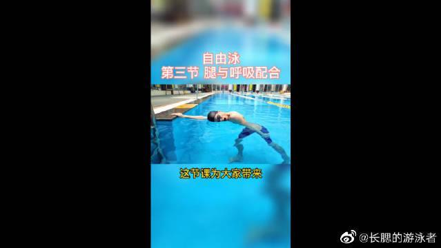 自由泳腿与呼吸配合,一起学习一下吧!