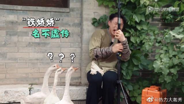 """猛男认怂,烧饼怕鸡鸭鹅喊岳岳替考 德云""""铁娇娇""""实锤!"""