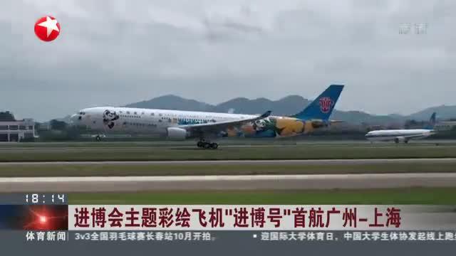 """进博会主题彩绘飞机""""进博号""""首航广州 - 上海"""