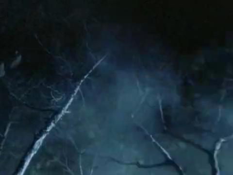 遭到狼群追杀的男子,没想到竟被一阵大风所救,让人难以想象
