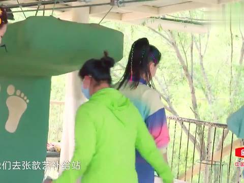 蔡少芬节目自爆,张晋曾为了追她徒手劈砖头,张歆艺惊出表情包