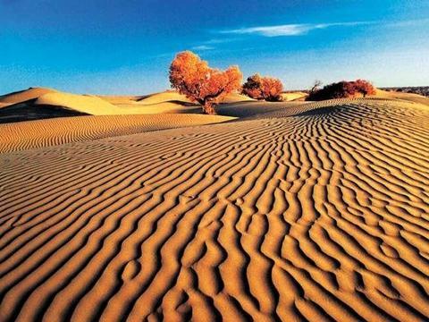 中国最大沙漠,到底隐藏着什么秘密?发现奇怪图案