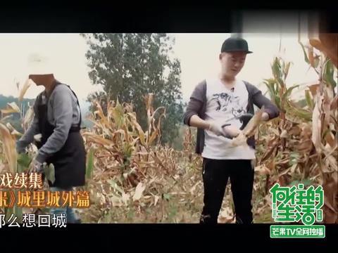 向往的生活:老戏骨海清和李解上演纯真年代大戏《玉米地之恋》!
