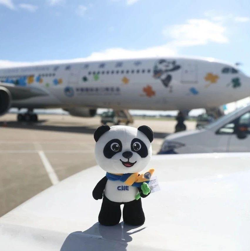 """进博会主题彩绘飞机""""进博号""""在广州亮相"""