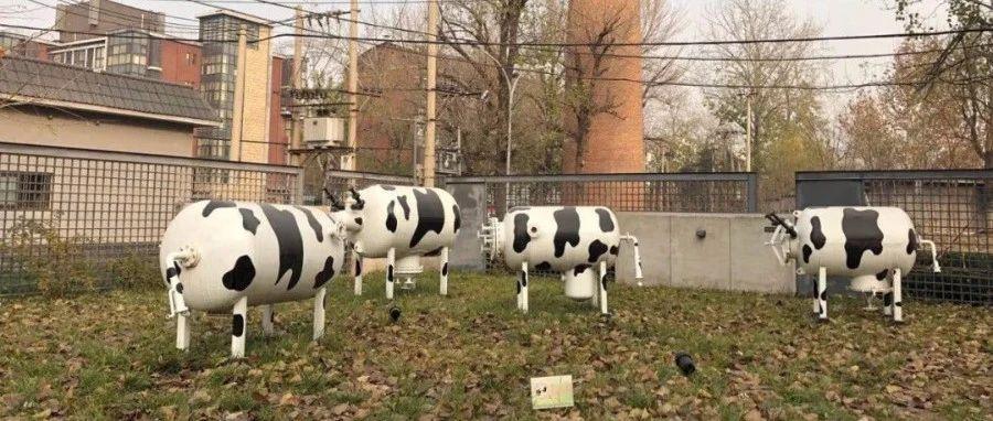 猪肉跌价压力测试:龙头三甲温氏、牧原、正邦谁更能扛压?