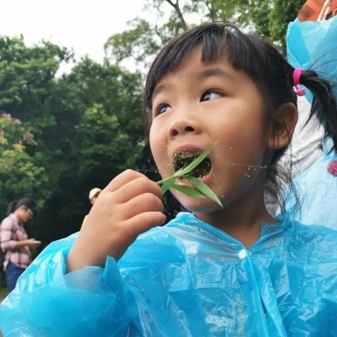 博士带这群孩子在南宁寻找奇妙的朋友,对野草都很感兴趣~