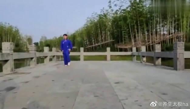 陈士侠老师现场演练传统武术太极拳!