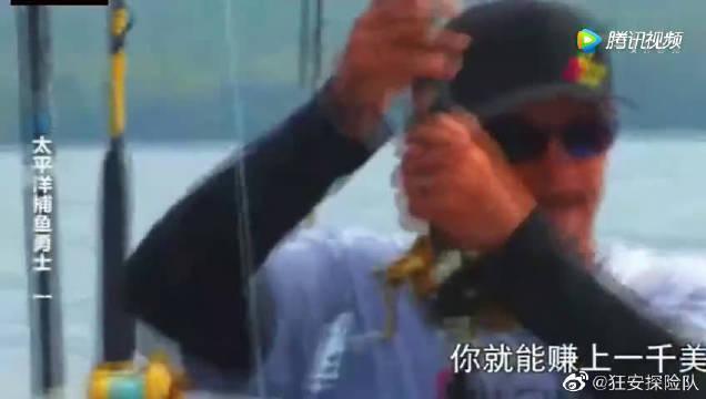 荒野探险:垂钓者大西洋钓大金枪鱼失败一次……