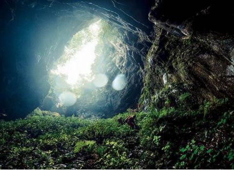 黑暗生态系统长什么样?科学家描绘真实地心世界,让人毛骨悚然