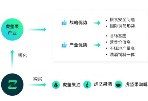 金种子通证ZZT与中铁弘基集团达成战略合作, 孵化侧链ZZG