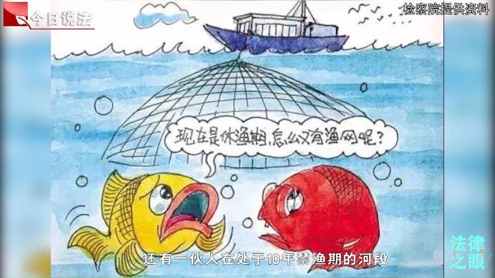 检察院小姐姐:非法捕捞可能涉嫌犯罪
