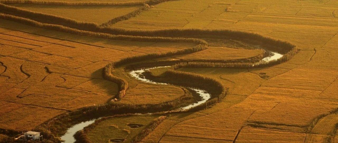 唐珂:推动中国农民丰收节化风成俗