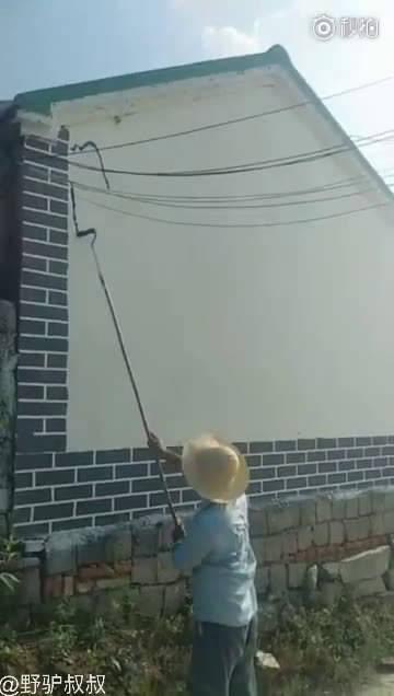 这才是真正的新农村建设者!