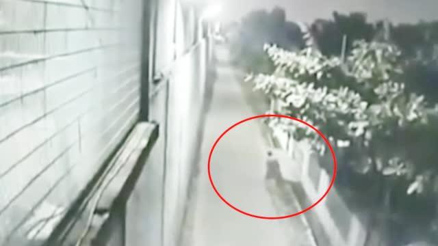 画面曝光!中国籍涉毒死刑囚犯在印尼越狱 挖洞钻下水道逃走