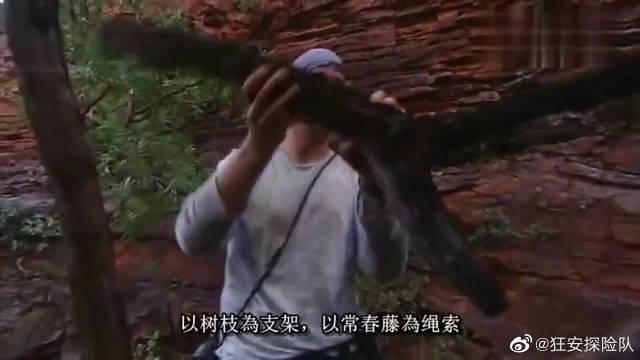 """荒野求生:贝爷冒雨搭建""""小屋""""……"""
