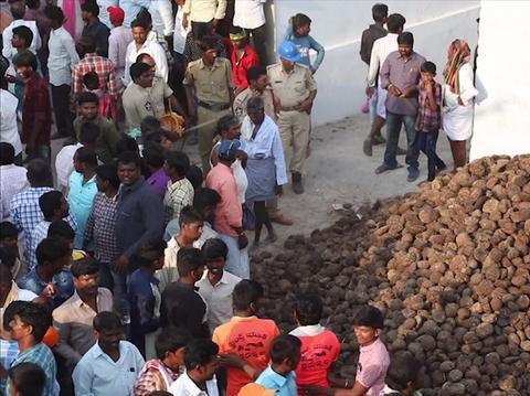 印度最奇葩的节日,现场牛粪满天飞,谁身上越多就能带来好运!