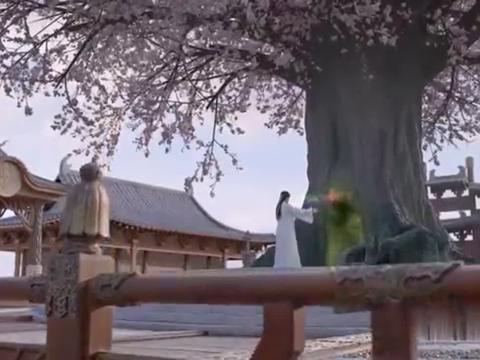 白谷逸将五行灵牒放回苍天树中,灵云问白谷逸为何不对付英男!