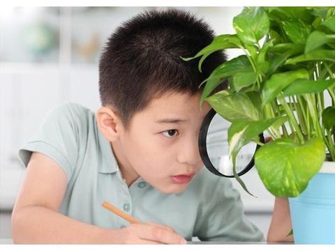 幼儿学科学,从提升孩子的提问层次开始,培养孩子的科学素养
