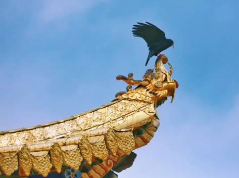 开着马自达CX-4自驾甘南,来到郎木寺大殿,欣赏藏地建筑艺术