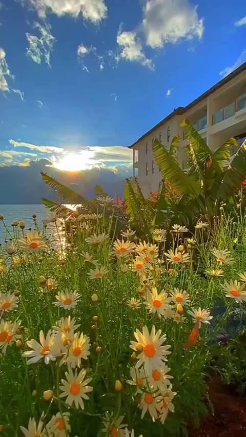 大理洱海,景色宛如宫崎骏电影画面太美了