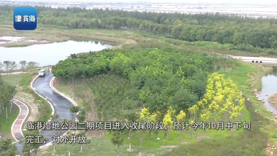 保税区临港湿地公园二期预计10月中下旬完工对外开放