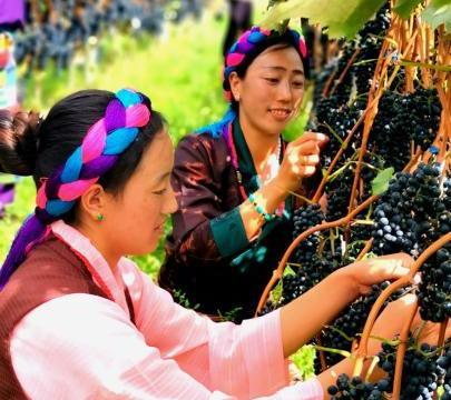 西藏昌都迎来70年巨大变迁