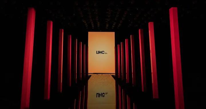 LINC金羽杰2020迷人的pose百万联动,独占羽绒服C位