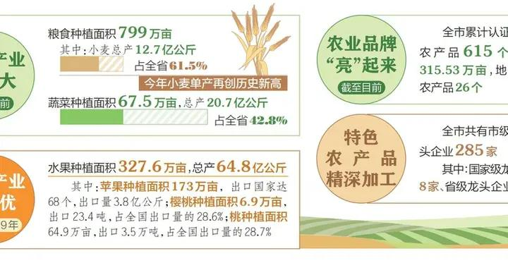 运城打造现代农业发展新标杆