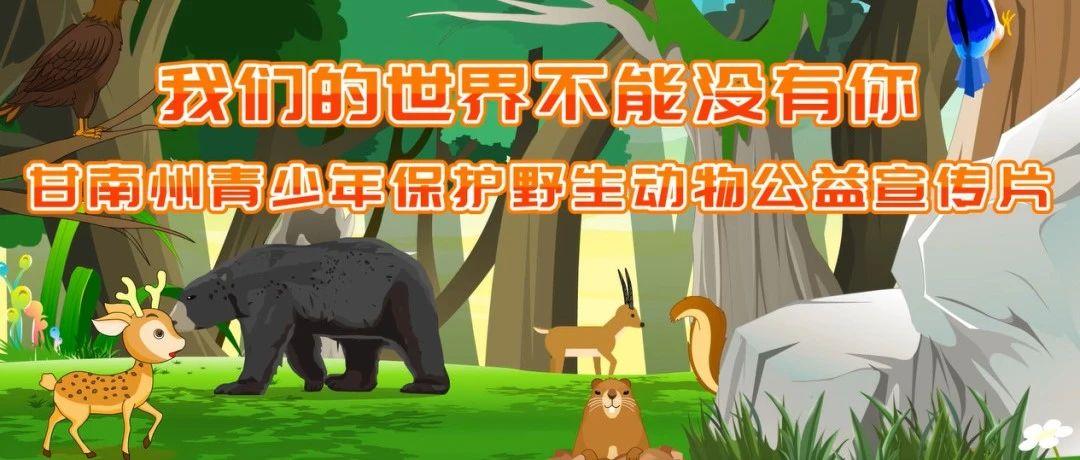 【青关注】甘南州青少年保护野生动物公益宣传片发布