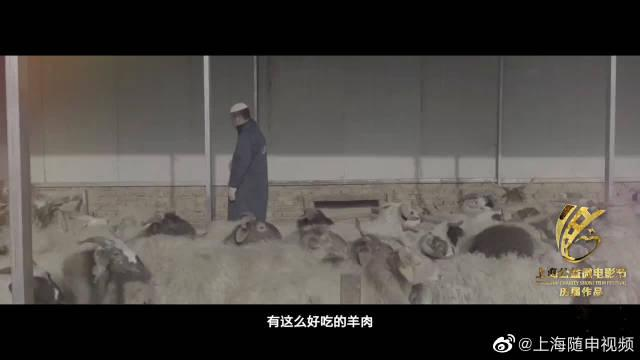 上海公益微电影节,历年作品集锦