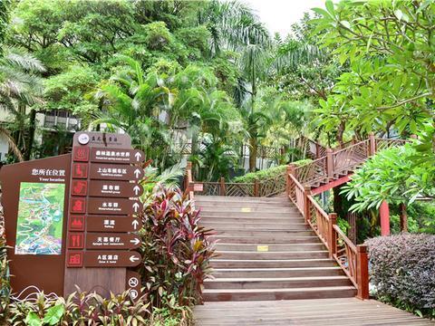 肇庆一景区曾名满全省,现重振雄风,风车群与瀑布群仍是游客最爱