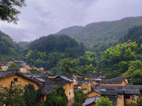 """浙江千年古村,人称""""江南秘境"""",如今却因这棵""""夫妻树""""走红"""