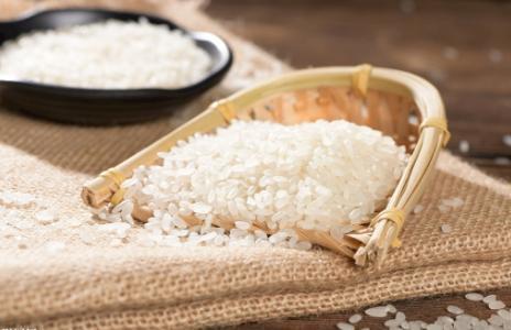 吃了30 年大米,才知道保存大米如此简单,放1年也不生虫发霉