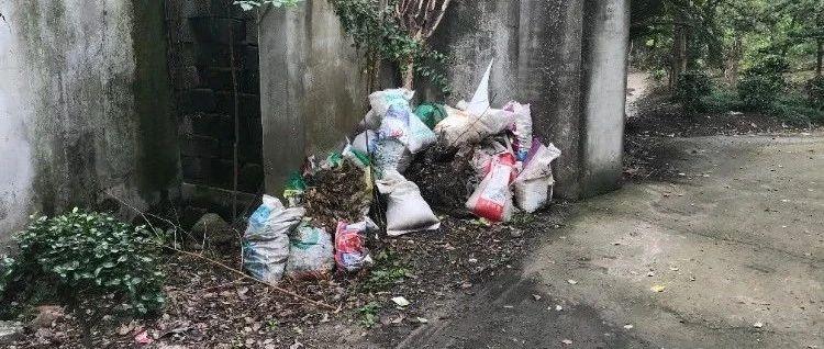 瓜沥镇光华路沿线环境脏乱,偷倒垃圾现象严重!