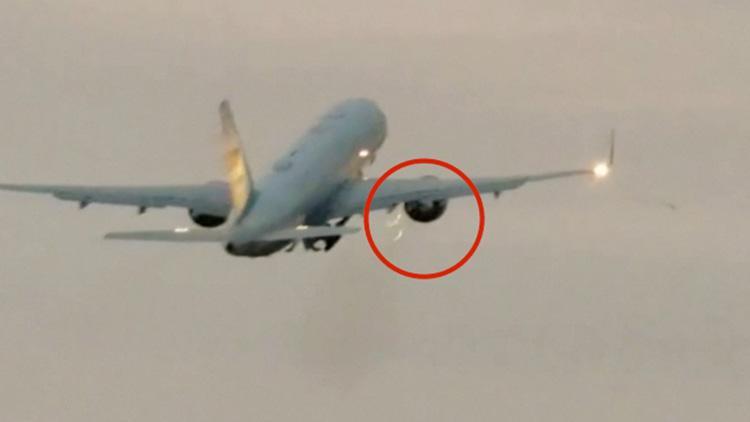 起飞后突发撞鸟意外 美国副总统专机紧急折返