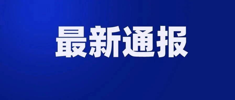 中共临河区教育局党组关于巡察整改情况的通报