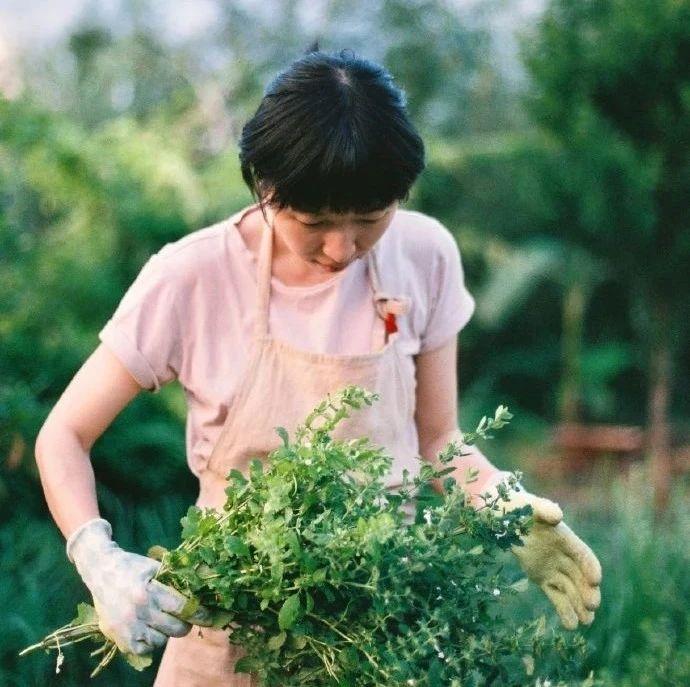 苍山洱海边,她租下100亩地造农场,井柏然都来做客:从此我不再需要安全感