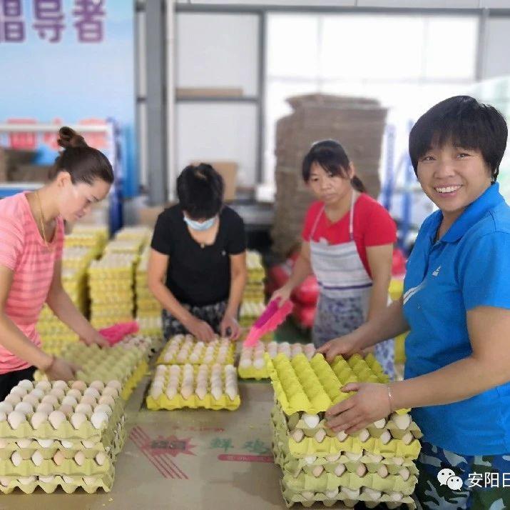 """网上卖火农产品!看汤阴县如何打造""""电商+扶贫"""""""
