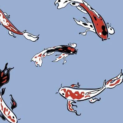 上天、爬树、放电、变性……这些都是鱼的技能