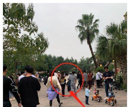 洪欣带儿子女儿游玩,蔡少芬李亚男作伴,唯独不见老公张丹峰