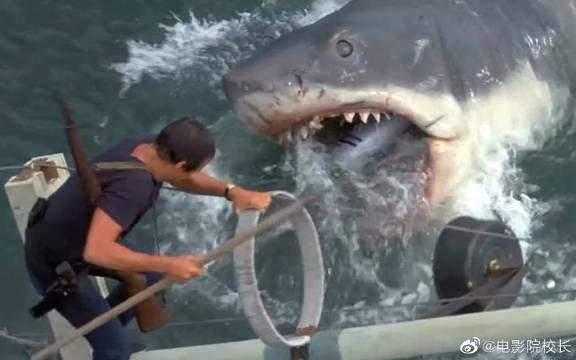 男子被鲨鱼逼到绝境,生死关头,氧气罐竟救了他一命!