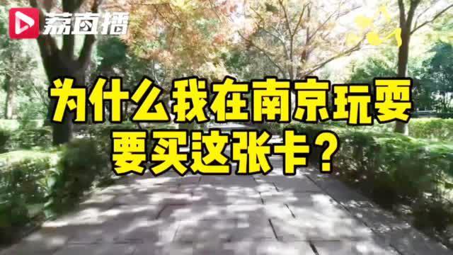 南京紫金山旅游护照游遍南京一年省1500元