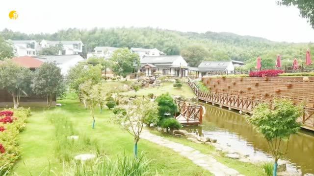 不是想像中的农村,却是你想要的田园,走近江宁特色田园乡村
