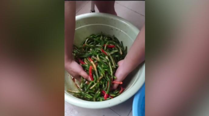 安徽高校男生网购五斤辣椒在宿舍腌制:徒食堂的菜不下饭