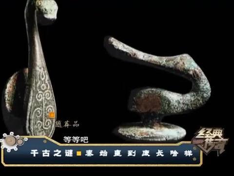 高级墓葬出现多具凌乱尸骨,竟是遭秦二世胡亥辱杀的皇族